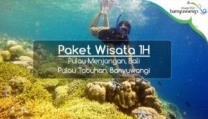 Open Trip Pulau Menjangan Paket Wisata Banyuwangi