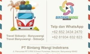 Travel Banyuwangi Sidoarjo PP