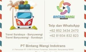 Travel Surabaya Wongsorejo Banyuwangi